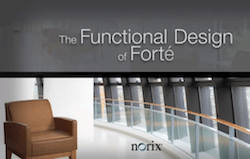 Functional Design of Forte Video
